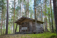 Old cabin in the woods. Old wooden cabin in the woods royalty free stock image