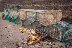 Old cage for lobster on shore in Scotland Royalty Free Stock Image