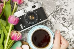 The old camera is lying on a concrete table, next to a cup with hot tea, next to it are a pink bouquet of tulip flowers. Concept. Breakfast, instagram, travel royalty free stock images