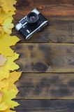 The old camera among a set of yellowing fallen autumn leaves on a background surface of natural wooden boards of dark brown colo. R royalty free stock photos