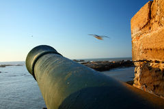 Old Cannon of Essaouira Stock Image