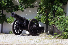 Old cannon in front of a wall Royalty Free Stock Images