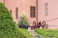 Old cannon, pink facade and greenery stock images