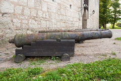 Old cannons Royalty Free Stock Images