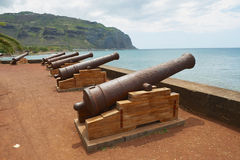 Old cannons at the sea side of the Saint-Denis De La Reunion, capital of the French overseas region and department of Reunion. Stock Images