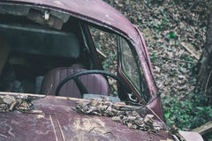 Old car abandoned in nature. Windshield is missing and hood is covered with leaves. Shallow selective focus, retro film simulation: muted contrast, shifted stock image