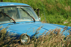 Old car -close up. Old car in grass field royalty free stock photo