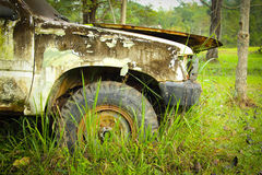 The old car damage park in wild Stock Image