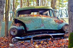Old Car in the Forest. Old car abandoned in the forest with fallen autumn leaves Stock Photography