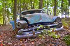Old Car in the Forest. Old car abandoned among the trees Royalty Free Stock Images