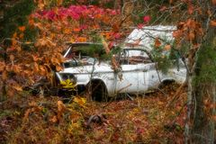Old Car on Hillside stock image