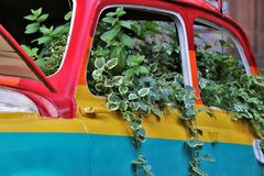 An old car painted in rainbow colors, covered by plants. royalty free stock photo