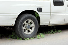 Old car parked long time weeds on wheel Royalty Free Stock Image