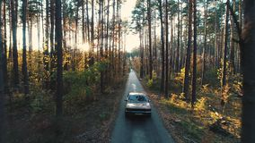 Old car rides in forest stock footage