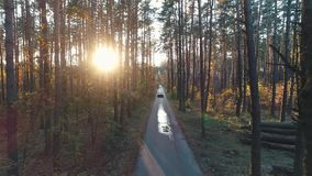 Old car rides in forest in sunlight stock footage