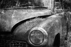 Old Car rusting in fores. T, black and white vintage photo effect Royalty Free Stock Photos