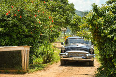 Old car in Vinales, Cuba. Old car surrounded by nature, Cuba stock image