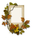 Old card with autumn leaves on isolated white background Stock Photography