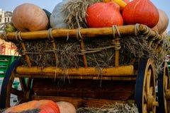 Old carriage cart decorated with autumn pumpkins. Stock Photos