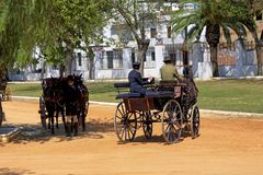 Old carriages with hooks of tradition in the modality of Limonera pulled by a horse and Trunk horses in parallel. Old carriages with traditional hooks in the stock images