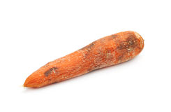 Old carrot. Isolated on white Royalty Free Stock Photography