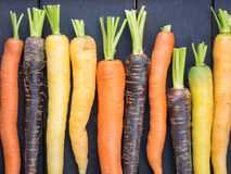 Old carrot varieties Stock Photo