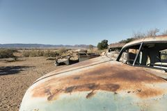 Old cars, all rusted and abandoned in the middle of the southern royalty free stock images