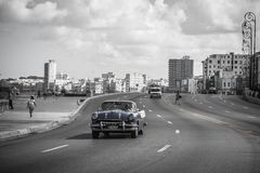 Old cars. In the malecon of la habana Royalty Free Stock Image