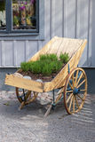 Old cart at a farm Royalty Free Stock Photo