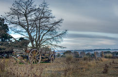 Old cart in field Stock Photo