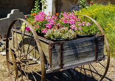 Old cart filled with blooming flowers Royalty Free Stock Photo