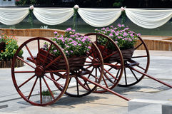 Old cart of flower Royalty Free Stock Photos