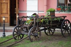 Old cart with flowers Stock Images