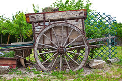 Old cart in a garden Stock Photography