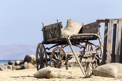 The old cart horse Stock Images