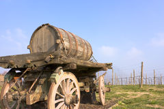 Old cart with wine barrel. Old cart barrel for transport of wine in farm with row grapevine Royalty Free Stock Image