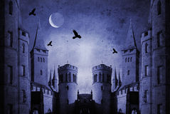 Old castle. At night with moon and birds Stock Image