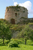 Old Castle (castle on the hill) Royalty Free Stock Images