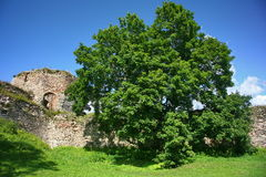 Old Castle (castle on the hill) Royalty Free Stock Photography