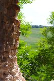 Old castle wall and horizon. Old castle destroyed wall and horizon. Trees growing away from the building stock photos