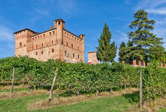 Old castle and green vineyards in Italy. Stock Photo