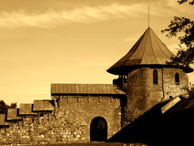 Old castle III stock photo