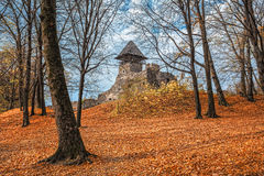 Old Castle In Autumn Forest Stock Photos