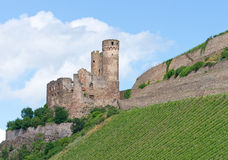 Old castle on river Rhine Stock Photography