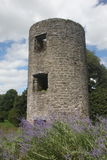 Old Castle ruin of a tower Royalty Free Stock Photography