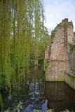 Old castle ruins on the river. With weeping willow royalty free stock photo