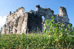 Old castle ruins in Transcarpathian Stock Photography