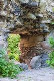 Old castle ruins in Transcarpathian Stock Image