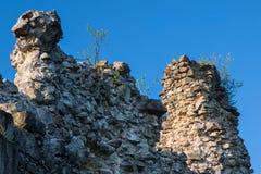 Old castle ruins in Transcarpathian Ukraine Royalty Free Stock Images