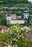 Old castle in Stiavnica. Old Castle was a church before the rebuilding under the pine trees in vertical portrait format Stock Photography
